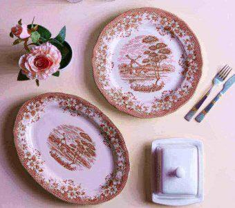 Dinner plates: serveware